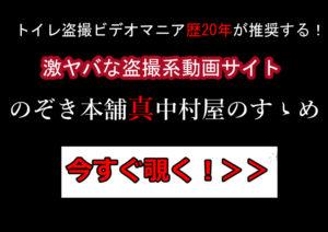 トイレ盗撮動画マニアにおススメ!のぞき本舗真中村屋