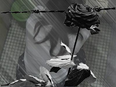 豪快7名の大 【美しき個室な世界 大特集 1】