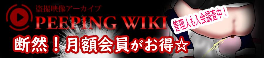 盗撮系PEEPING WIKI覗き見体験録
